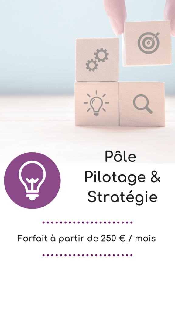 offre-pole-pilotage-strategie-entreprise